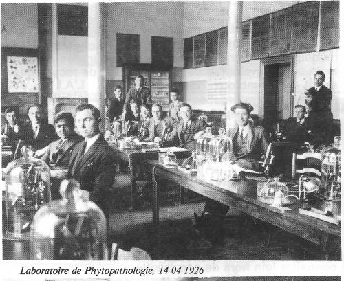studentagrophyto1926.jpg